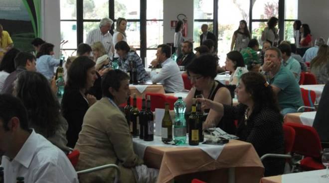 maremma_wine_shire_II_20112