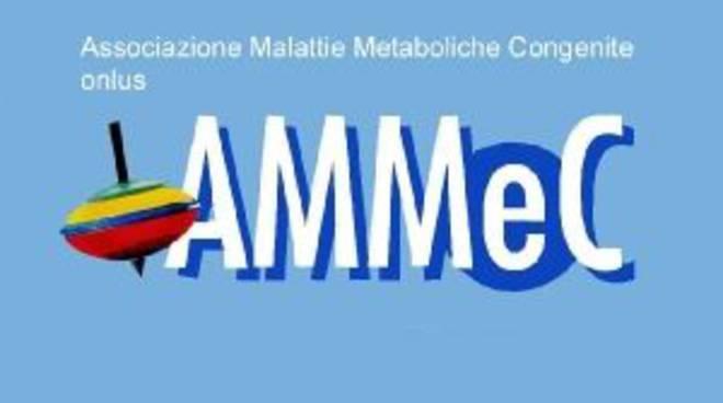ammec_logo