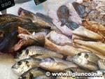 supermercato_alimentari_pescemod