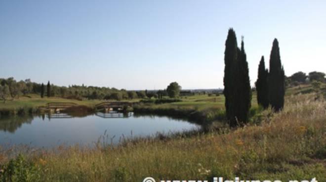 golf_pelag_2012_21mod