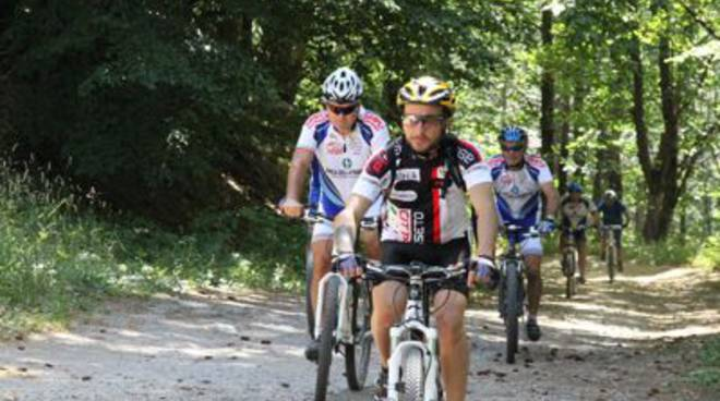 Mountain bike uisp