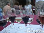 salotto vini 2012 slow food 3