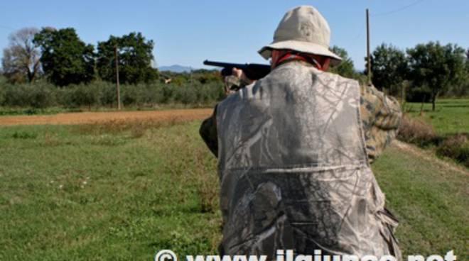 caccia_cacciatore_1mod