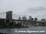 New York (264)mod