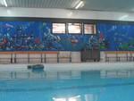 piscina_veterani_sport