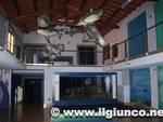 museo_storia_naturale_grosseto_4mod