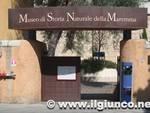 museo_storia_naturale_grosseto_1mod