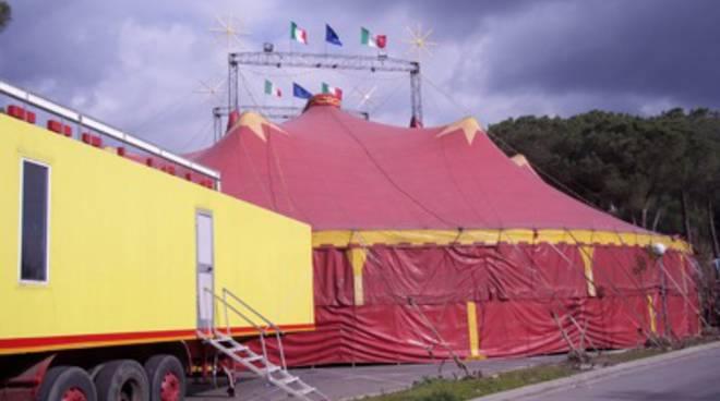 circo_2013