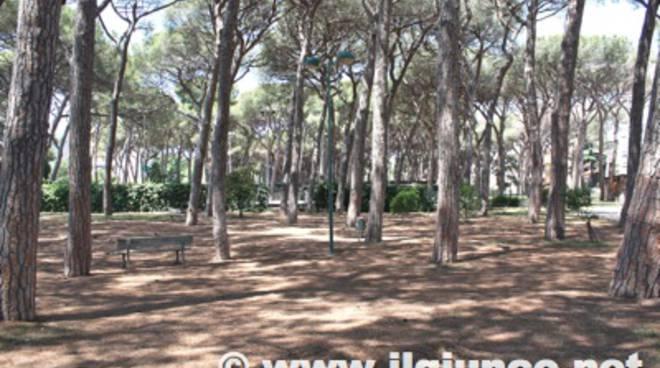 pineta_ponente_follonica_2012_10mod