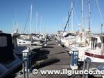 porto_scarlino_puntone