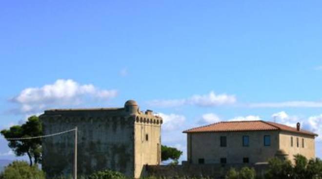 albinia torre saline wikipedia