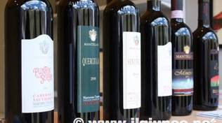 wine_food_shire_4_2013mod vino