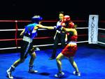 Fight Gym