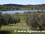 lago_accesa_3mod