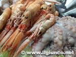 pesce crostacei polpo_2013