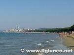 spiaggia_puntone_2013mod