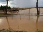 alluvione_braccagni