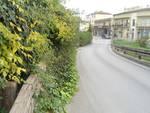 verde_pubblico_carreggiata