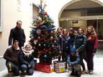 albero_caritas