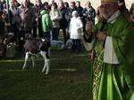 benedizione_animali_1 sant'antonio abate