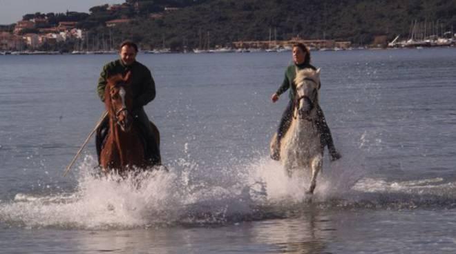 cavalli_fonteblanda