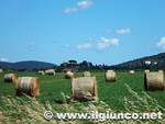 campagna rotoballe agricoltura 2014mod