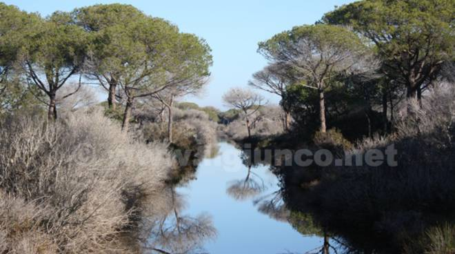 Alberese Spergolaia bocca Ombrone parco parco della Maremma