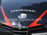 carabinieri_2014_2_mod