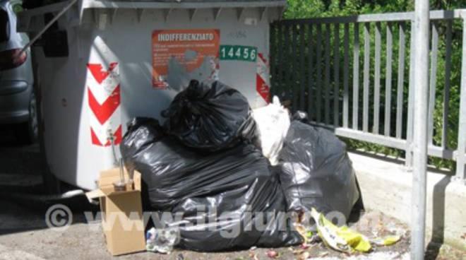 cassonetto rifiuti 2014