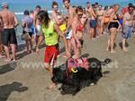 Cani Bagnino3