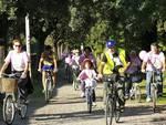 bici mura grosseto
