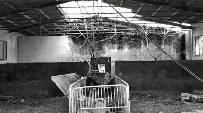 Culto Industriale mostra fotografica