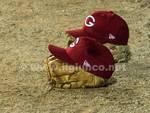 Baseball Grosseto generica