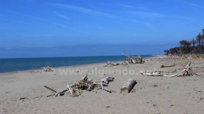 spiaggia marina alberese 2015 parco della maremma