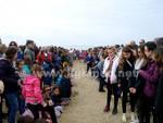 Tartarughe Folla