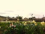 9 Jardin de Tuileries