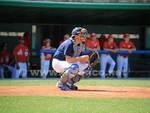 Enegan-Jolly Roger Baseball3