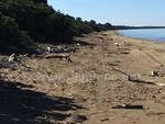 spiaggia osa albegna