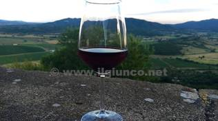 vino_generica_2015 (1)