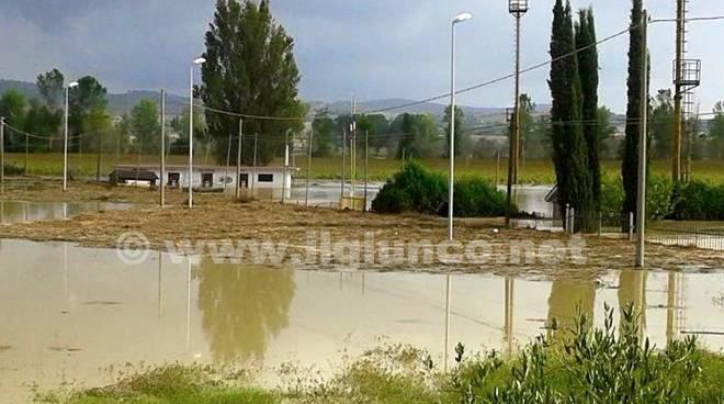 Veterans campo allagato Istia d'Ombrone