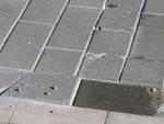 betonelle maremmana