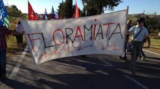 Floramiata protesta