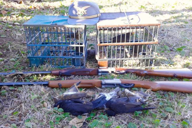 caccia illegale richiami