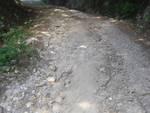 strada dissestata mulattiera a Roccastrada Pescine Le Piagge