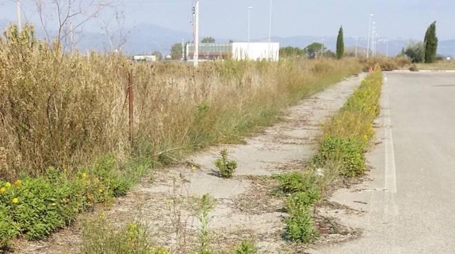 Madonnino Roccastrada incuria