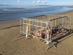 oggetto metallo ordigno bomba spiaggia scarlino