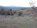 Sterpeti (Magliano in Toscana)