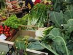 verdura mercato coperto
