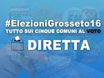 Diretta Elezioni Icona