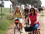 Cicloturismo bicicletta parco bici